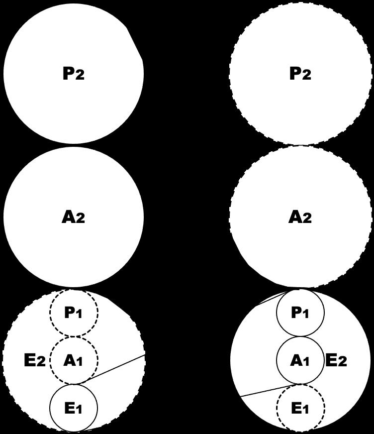 analyse transactionnelle, symbiose, théorie organisationnelle de Berne, lyon